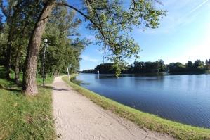 krajina, obloha, strom, voda, řeka, jezero, léto, cestování, lesní