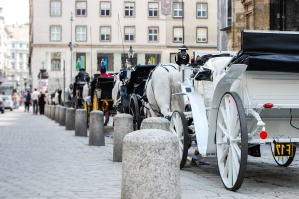 street, pillar, concrete, carriage, horse, attraction, retro