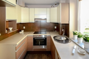 Horno, cocina, fregadero, maceta, planta, interior, muebles, arquitectura
