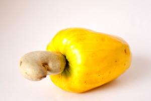 cashew, fruit, food, diet, vegetarian, ripe, delicious, organic