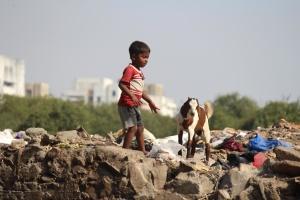 Junkyard, niño, India, cabra, basura