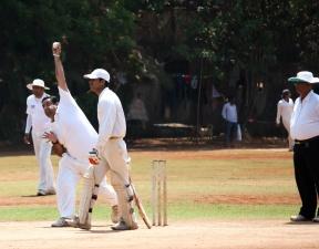 Cricket, action, Inde, sport, loisirs