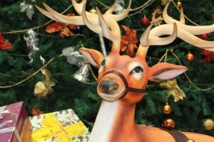 Rena, Natal, árvore, decoração, brinquedo