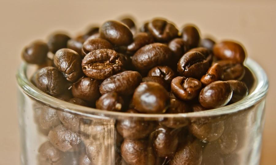 Chicco di caffè, vicino, seme, marrone, vetro
