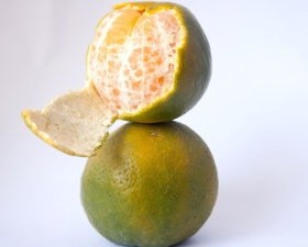 Citrus, orange, agrumes, fruits, nourriture, citron, vitamines, régime alimentaire