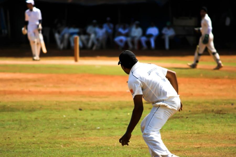 Cricket, sport, azione, giocatore, uomo, ricreazione