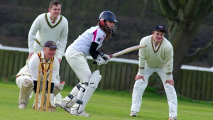 cricket sport, people, game, grass, player