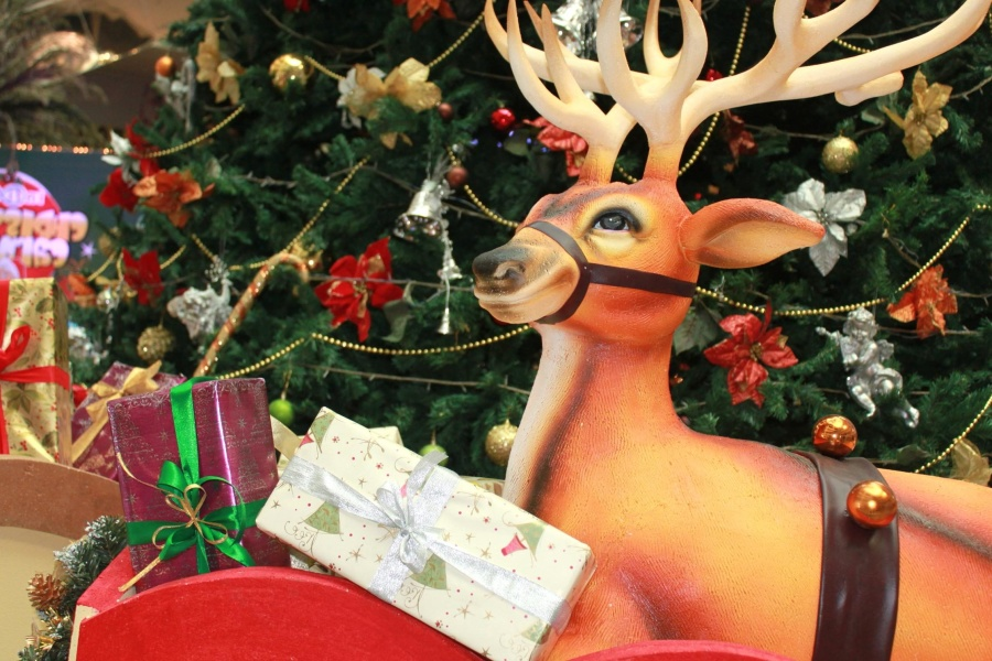 reindeer, christmas, decoration, tree, gift, colorful