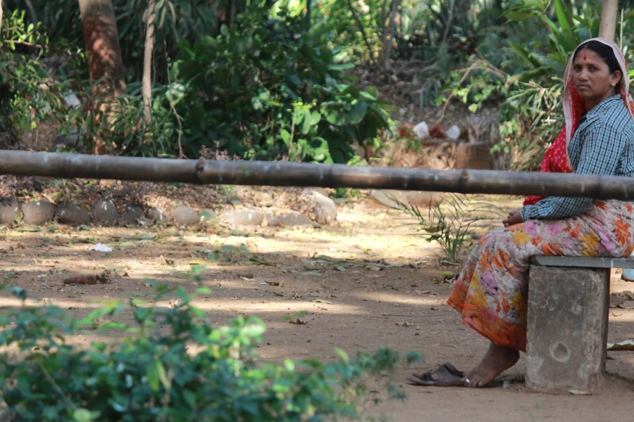 Ở Ấn Độ, làng, người phụ nữ, mùa hè, người, ngày