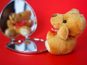 teddy bear, mirror, toy