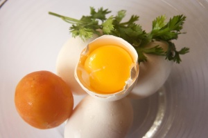 egg, tomato, egg yolk, ingredient, food, diet
