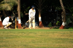 cricket sport, game, activity, contest, grass