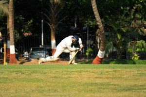 cricket sport, game, recreation
