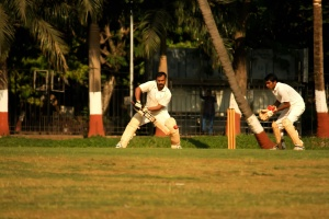 sport, cricket sport, game, physical activity