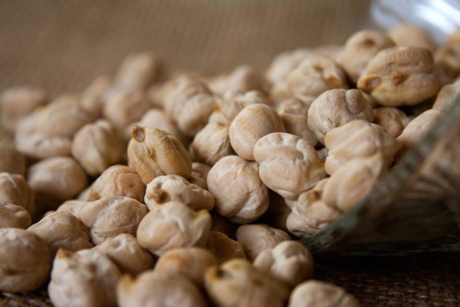 diet, seed, kernel, herb