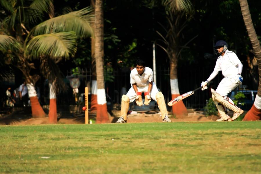 cricket sport, game, child, sport, field