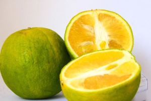 fruit, citrus, lemon, food, fresh, diet, vitamin, yellow