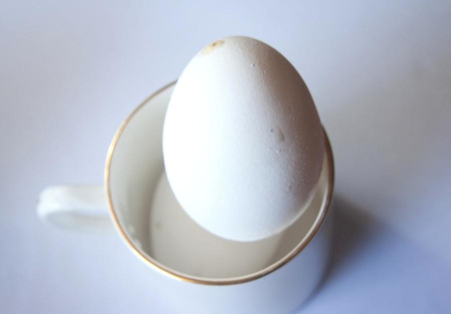 egg, mug, white, food