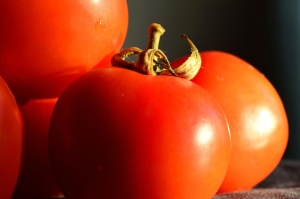 Tomate, vegetal, comida, fresco