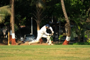 Sport di cricket, campo, gioco, sport, India