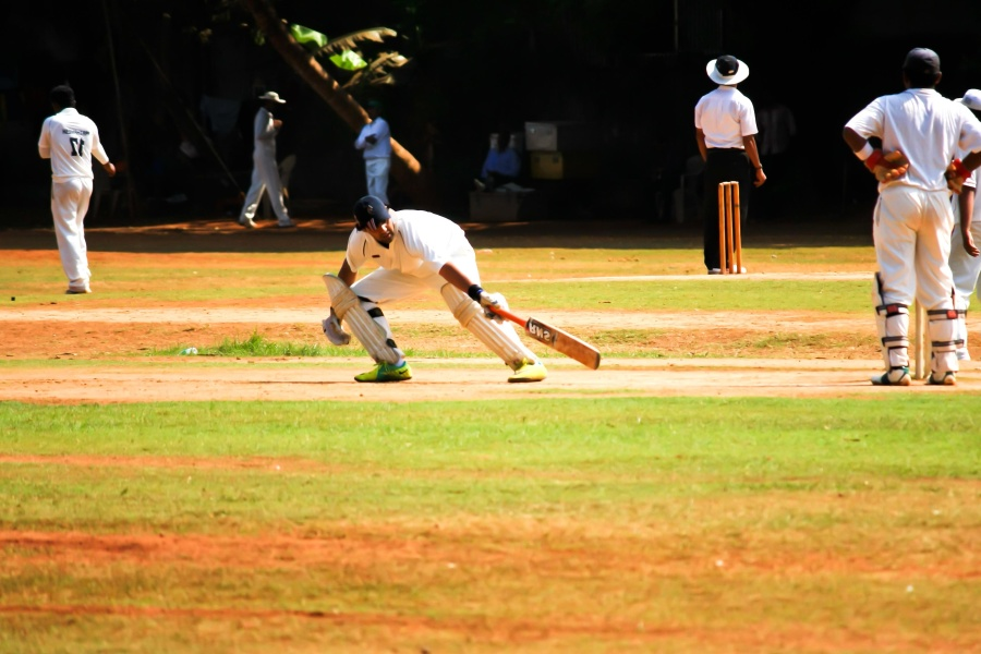 player, person, cricket sport, team, sport, ball