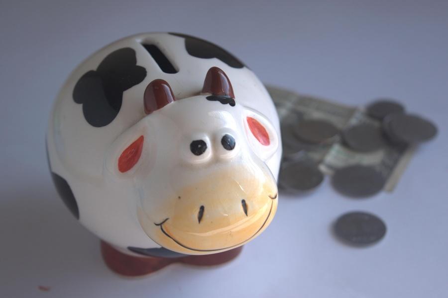 banke, financije, novac, svinja, ulaganja