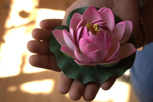 flower, pink, water lily, bouquet, flowers, hand, finger