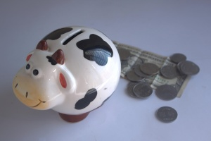 Objekt, svinja, novac, financije, gospodarstvo