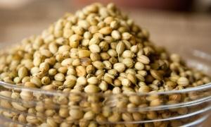 seed, kernel, grain, food, aroma