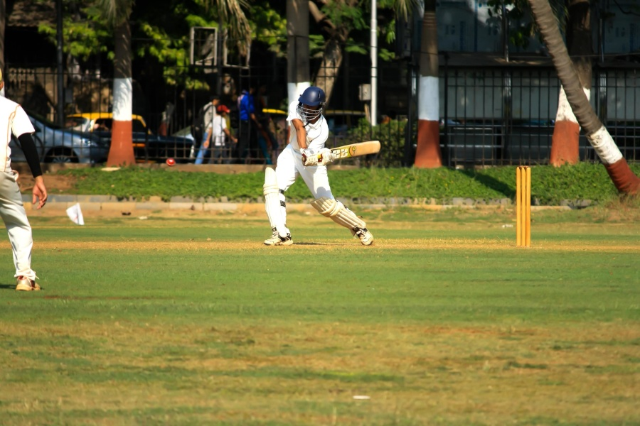 cricket sport, game, sport, field, grass, people