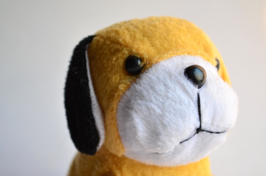 yellow, puppy, toy, object
