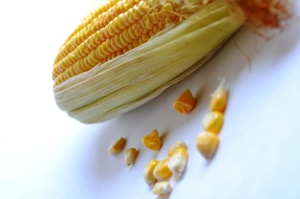 grain, corn, fruit, food, seed