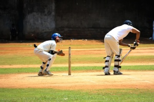 cricket sport, action, practise, field, ball, player