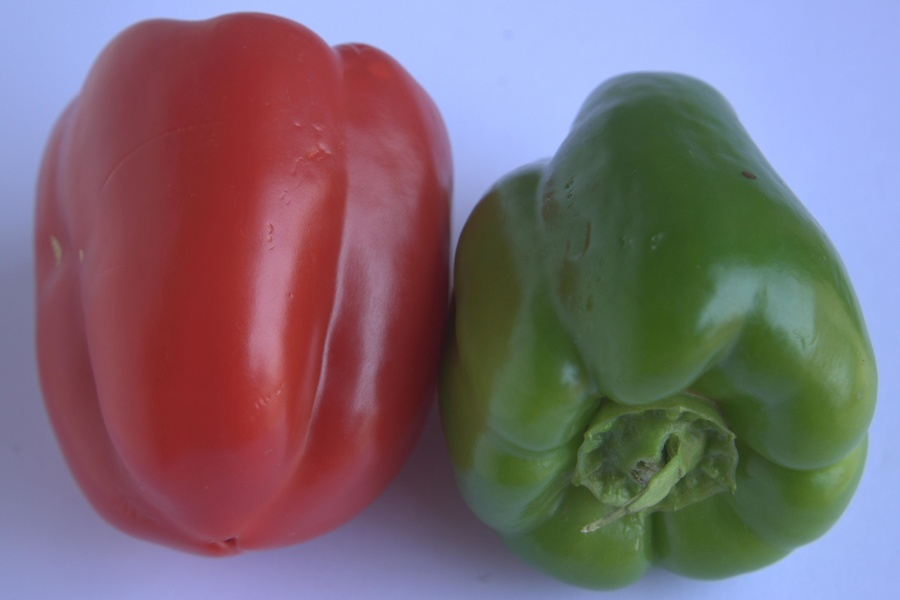 capsicum, bell pepper, vegetable, diet