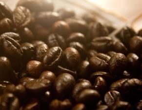 Chicchi di caffè, sementi, cofee