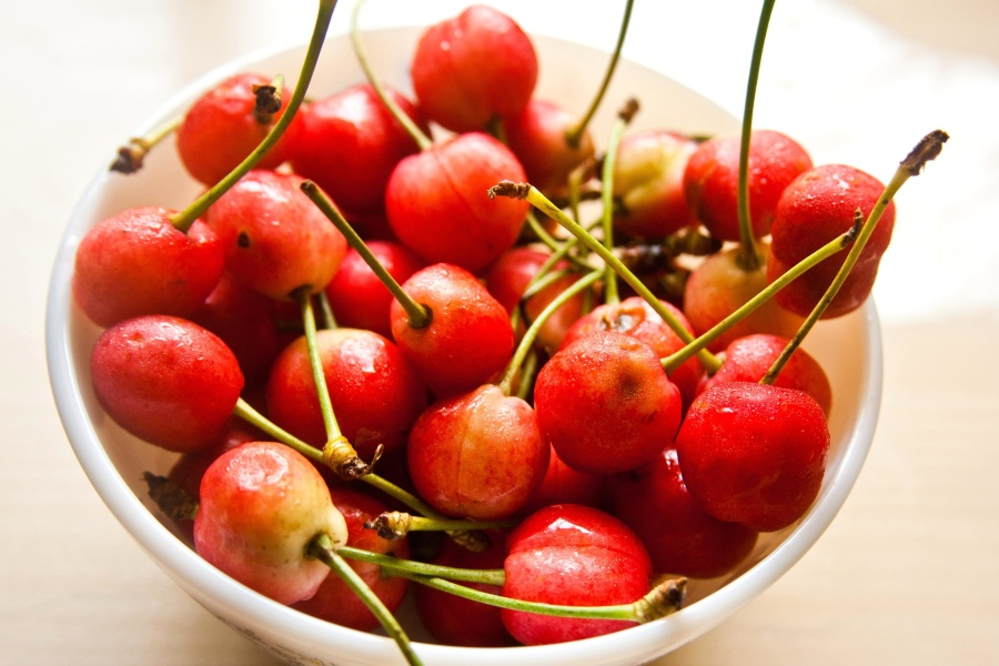 bowl, cherry, fruit, sweet, food, meal