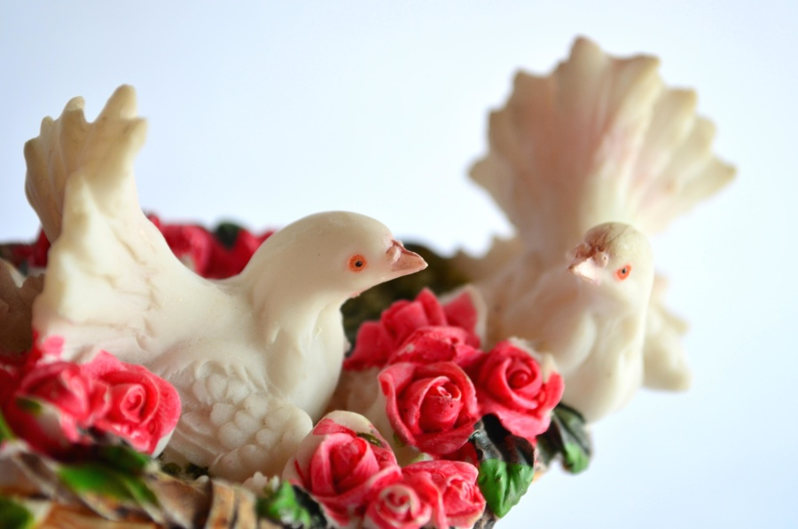 dove, bird, love, toy, decoration, colorful, plastic