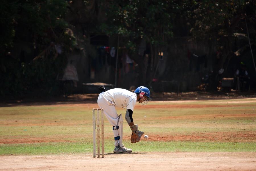 sport, cricket sport, man, athlete