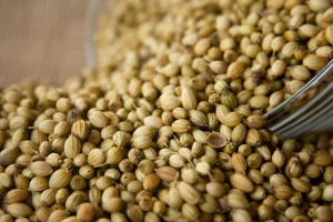 Coriandolo, seme, ciotola, kernel, fagiolo, cibo