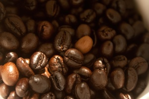 coffee bean, seed, brown, kernel, diet