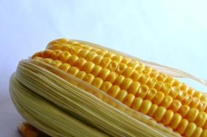 Mais, verdura, mais, grano, kernel, seme