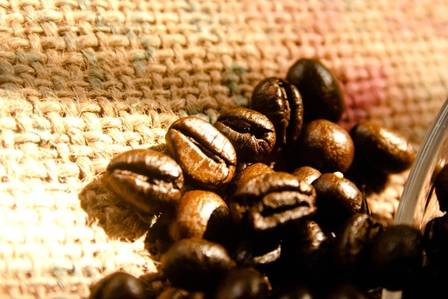 coffee bean, seed, brown, diet, textile