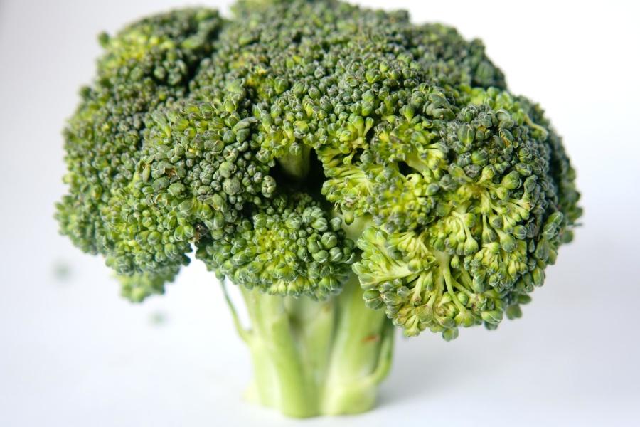broccoli, diet, herb, green, vegetable, food