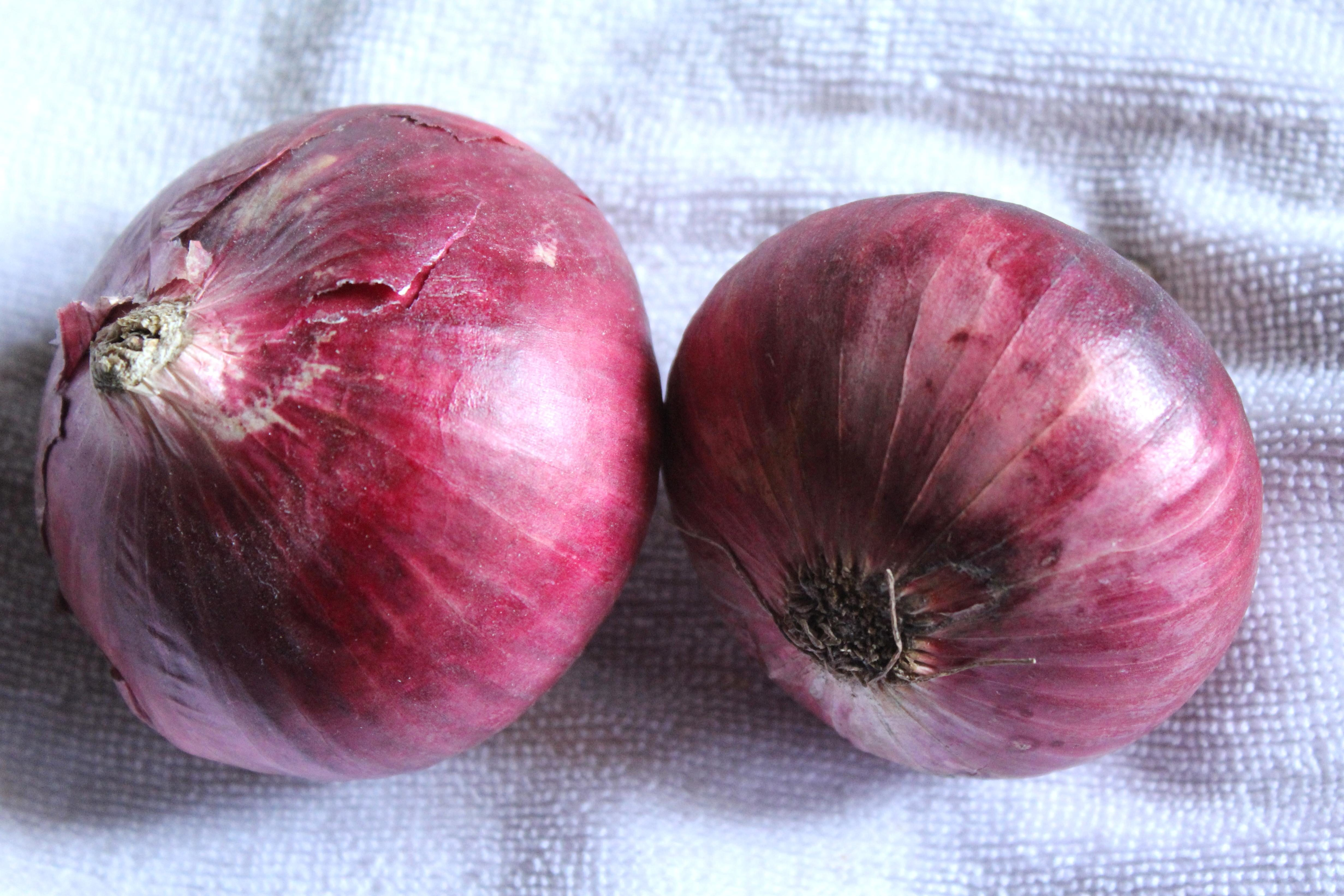 red onion nutrition