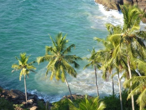 paradise, sea, coconut, palm tree, summer, water, landscape, exotic