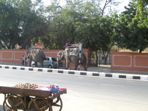 elephant, India, road, cart, carriage, wagon, street