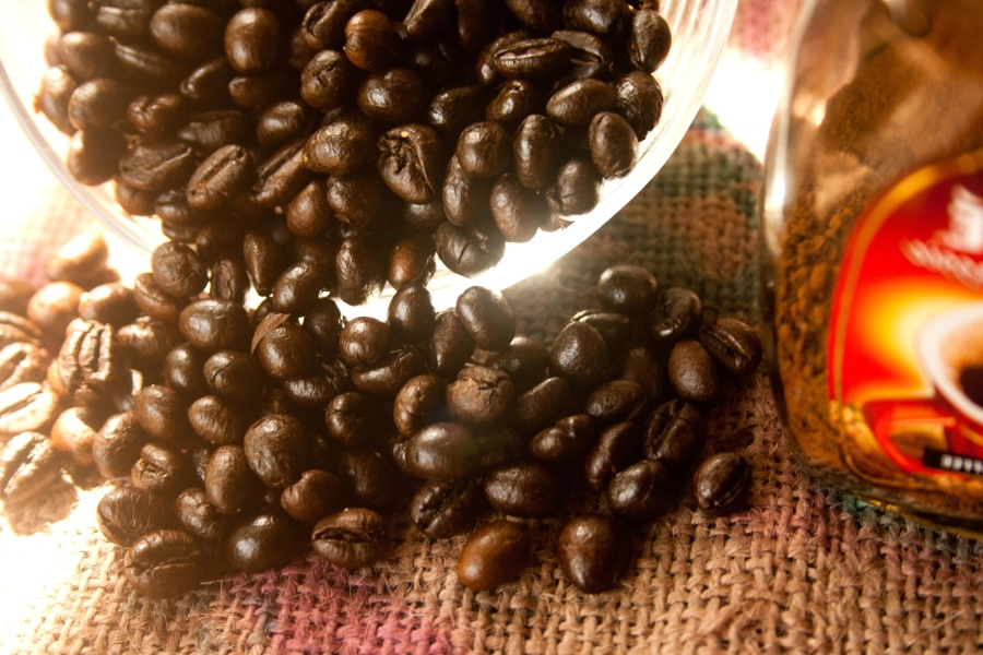 coffee bean, bowl, seed, brown, glass