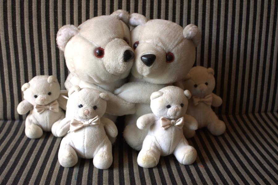 teddy bear, happy, family, toy