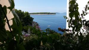 Orilla, océano, lago, paisaje, isla