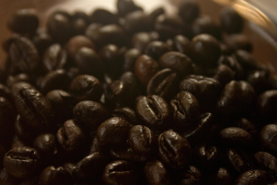 coffee bean, seed, black coffee